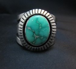 Cooper Willie Navajo Sonoran Gold Turquoise Ring Sz9