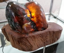 Amber Lamp - Sumatra, South Pacific