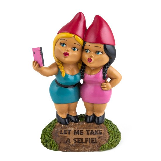 Image 0 of Gnome Sister Taking a Selfie!