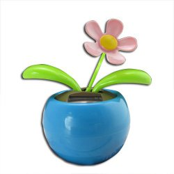 flower Dancing Flower