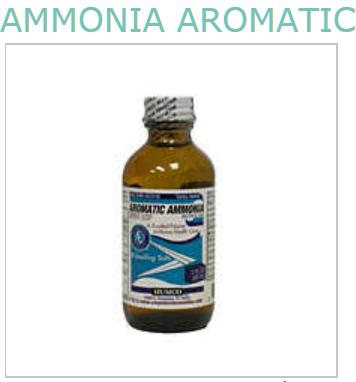 Ammonia Aromatic Liquid 2 oz