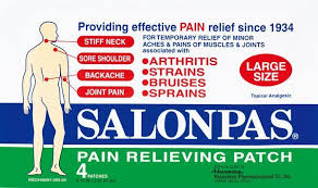 Free Shipping-Salonpas Pain Relieving Patch - 20 Count Case of 72 By Emerson Hea