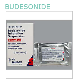 RX ITEM-Budesonide 0.5mg 2ml Res 30X2ml by Sandoz Pharma