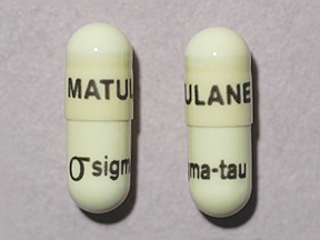 RX ITEM-Matulane 50Mg Cap 100 By Sigma Tau Pharma Rx