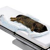 Bair Hugger Animal Health Underbody 10 Blankets Small 33 x 36 By 3M Animal