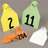 Agritag Calf Blank Yellow With Button [Large]� P25 By Allflex(Vet)