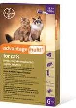 Advantage Multi For Cats 10-18# Purple