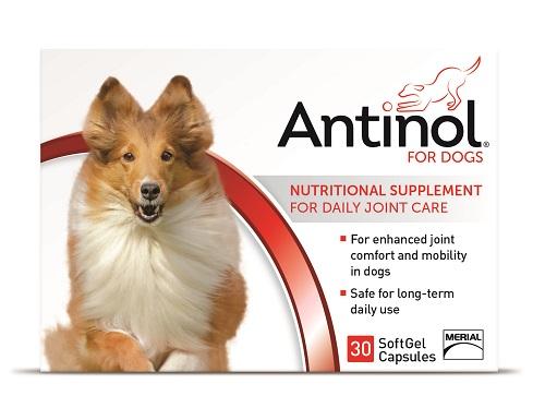 Antinol Canine - 30 Gel Caps B10 By Boehringer Ingelheim Vetmedica