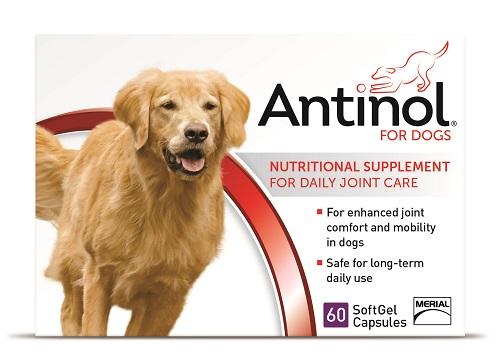 Antinol Canine - 60 Gel Caps B10 By Boehringer Ingelheim Vetmedica