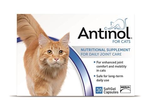 Antinol Feline - 30 Gel Caps B10 By Boehringer Ingelheim Vetmedica