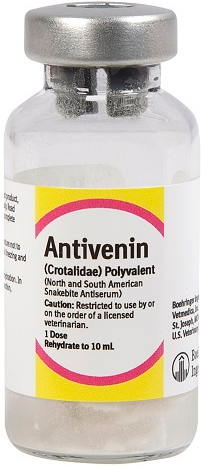 Antivenin 1Ds By Boehringer Ingelheim Vetmedica
