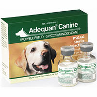 Adequan Canine 100Mg/ml 5ml To Order Contact Your Inside Sales Rep For Availabi