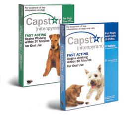 Capstar Tablets 57mg (Green) >25Lbs Canine [6 Tabs Per Strip X 10] Vet Pack B10
