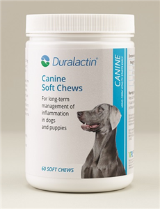 Duralactin K9 Soft Chews B60 By Veterinary Products Labs