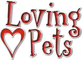 Beef Jerky Bars Treat 4 oz By Loving Pets