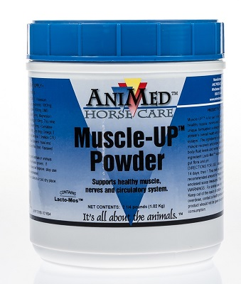 Muscle-Up 2.5Lb By Animed