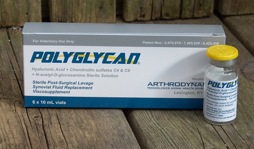 Polyglycan 10ml By Arthrodynamic Technologies