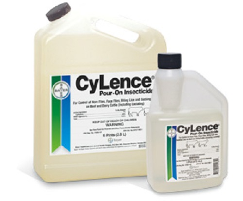 Cylence/Clean Up 6Pt 30ml Gun Each By Bayer