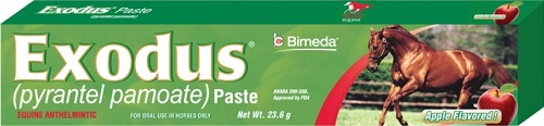 Exodus Paste 23.6gm (Pyrantel Pamoate) Apple Flavor Each By Bimeda Pet