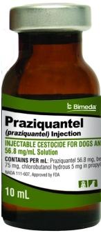 Praziquantel Inj 10ml 10cc By Bimeda Pet