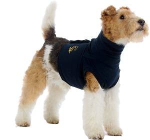 Mps Protective Top Shirts - Small Each By Bimeda Pet