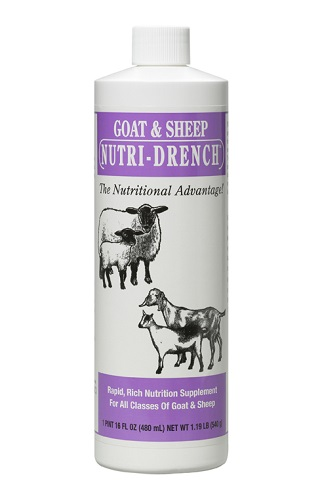 Nutri Drench For Sheep/Goat Pt By Bovidrx Laboratories