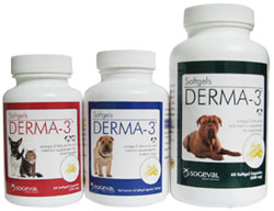 Derma 3 Softgel Caps For Large Breed Private Labeling Non-Returnable (Sold A