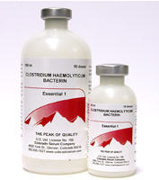Essential 1 Clostridium Haemolyticum Bacterin (Red Water) 10Ds By Colorado Serum