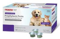 Dental Prophy Paste Jar (Mint) Coarse Grit 9 oz By Crosstex International