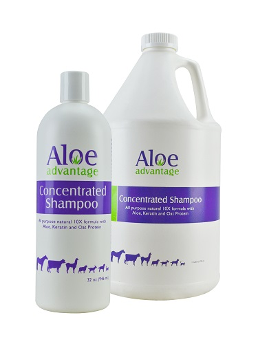 Aloe Advantage Concentrated Shampoo Gal By Durvet