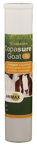 Copasure For Goats 4Gr 12 Count Tube By Durvet