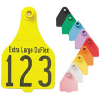 Duflex Blank W/ Button (XLarge) White To Order: Add A Note To The Message Boa