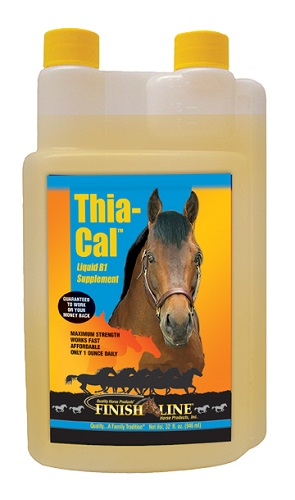 Thia Cal QT. By Finish Line Horse Products