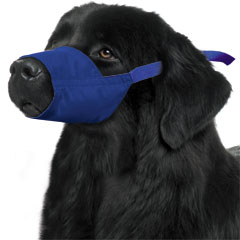 Muzzle Canine Quick Nylon (11 Snout / 100-120#) XXxlarge Each By Four Flags
