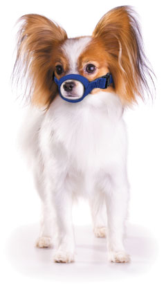 Muzzle Canine Quick Nylon (4.5 Snout / 5-10#) XSmall Each By Four Flags