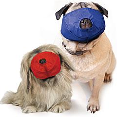 Muzzle Canine Quick Pug-Nosed/Brachycephalic Nylon 2-Piece Set (Color Coded) Sma