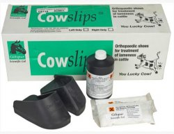 Cowslips Plus Kit - (5 Left And 5 Right) B10 By Giltspur Scientific Ltd