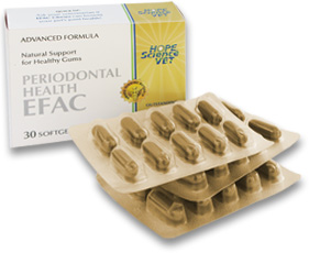 Efac Periodontal Health Soft Gels B30 By Hope Science