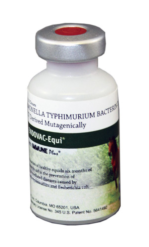 Endovac-Equi With Immuneplus (Salmonella Typhimurium) 10Ds By Immvac