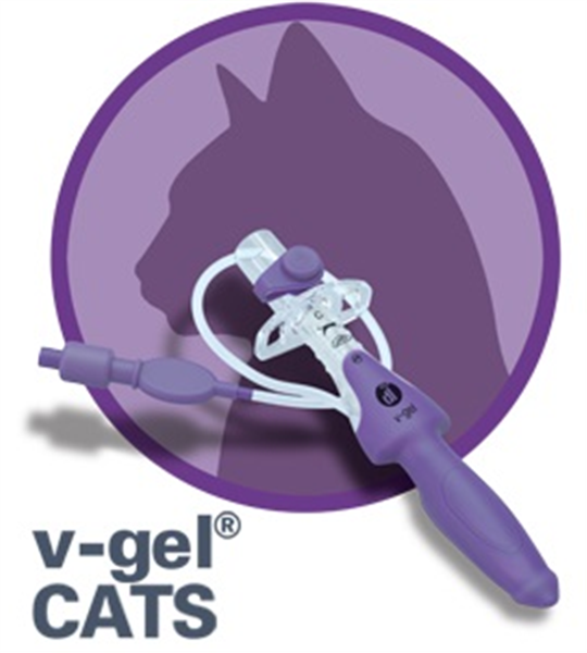V-Gel Cat Supraglottic Airway Device C1 Non-Returnable - Dropship : Expect