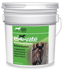 Elevate Maintenance Powder 10Lb By Performance Products