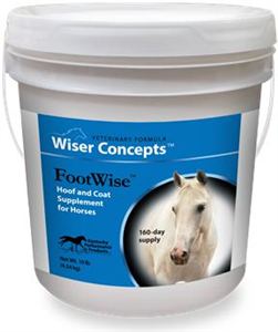 Footwise 10Lb By Performance Products