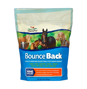 Bounce Back Multi-Species Electrolyte Supplement 4Lbs Each By Manna Pro Corporat