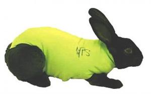 Medical Pet Shirt - Green Large [Rabbit] Each By Medical Pet Shirts