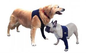 Medical Pet Shirts Protective Sleeve Taz2 Front Leg 2XLarge (Body 31.4-40.9 - L
