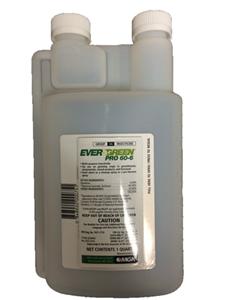 Evergreen Pro 60-6 QT. By Mgk Company