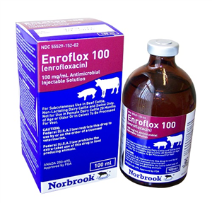 Enroflox 100Mg/ml Inj 100cc By Norbrook