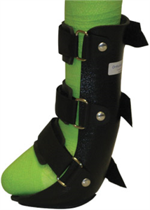 Ortho Vet Splint Front Leg Medium 10.5H Each By Ortho Vet