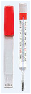 Thermometer Regular - Mercury Free With Case Each By Rg Medical