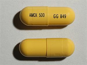 Amoxicillin Caps 500mg B500 By Sand oz